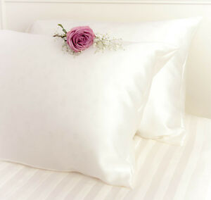 100% Pure and Organic Mulberry Silk Pillow Case - 19 Momme Ivory White