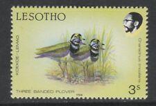 Lesotho 3424 - 1988 BIRDS 3s Plover SUPERB COLOUR SHIFT (double birds) unmounted