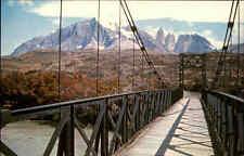 Chile Puente Sobre El Rio Payne Vintage Postcard Suspension Bridge Bridge