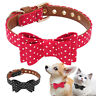 Small Dog Collar Bow Tie Leather Padded for Pet Puppy Cat Chihuahua Yorkie S M L
