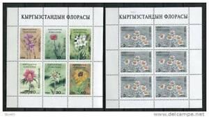 Kyrgyzstan 1994  2 Sheets Sc 34A 39A MNH Flora Flowers
