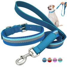 Reflective Webbing Dog Collar & Leads Leather Handle for Small Medium Large Dogs