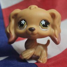 #716 Rare Littlest Pet Shop Brown Cocker Spaniel Dog Flower Eyes Animal LPS