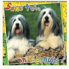CHIEN  Chiot   CHIENS  carte postale   n°  6028/57  Sans toi, on s'ennuie !