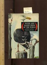 Oliver Austin / Herbert Zim WATER + MARSH BIRDS OF THE WORLD 1967 Golden Guide