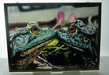 Glassmasters Kissing Frogs Art Glass Suncatcher Mona Kelpinski