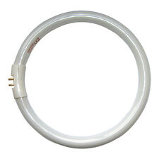 Tube circulaire Daylight NATURALIGHT / Ampoule 22 W-dn0002