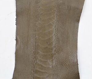 Ostrich Legs skin Leather in different colors (%100 Genuine skin Leather)