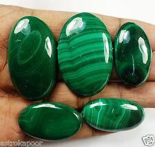 285.65 CT Kidney Stone 100% Natural Rare Quality Wholesale Lot Gemstone W1052