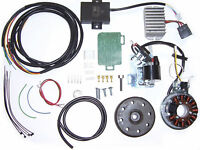 AWO elektronischer Zündung mit Lichtmaschine 12 V 150 W