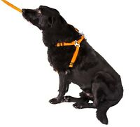 GoGo DOG HARNESS dogs lead ANY SIZE OR COLOR best quality Lifetime warrenty