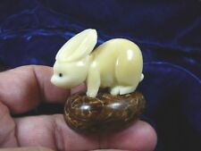 (Tn-Bun-002c) white Bunny Rabbit Tagua Nut Figurine carving Vegetable palm nuts