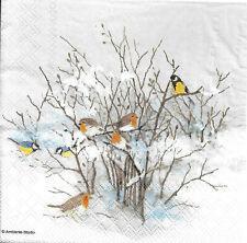 Lot de 4 Serviettes en papier Oiseaux sur des branches Decoupage Decopatch