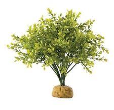 EXO Terra Buchsbaum Boxwood Bush künstliche pflanze