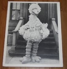 Vintage 1970's Big Bird Sesame Street Foamboard Display Photo