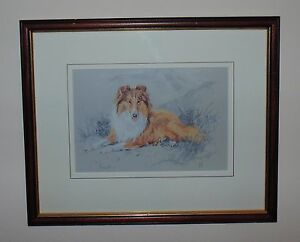 Rough Collie Limited Edition Print by UK Artist David Thompson Signed Picture