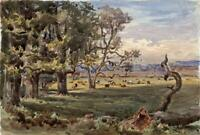 TREES IN LANDSCAPE HAM SURREY Victorian Watercolour Painting 1876