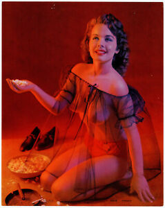 Fine Original 1958 Pin Up Litho Photograph Diaphanous Nighty Pretty Housewife