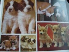 Dogs Book, From Colour Library Books, Great Britain, 1983