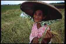 239023 Fattoria Donna centrale Filippine A4 FOTO STAMPA