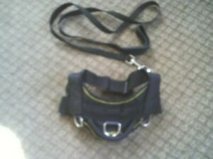 DEAN & TYLER  No Pull nylon SERVICE DOG HARNESS w Matching 6' LEAD, size S, New
