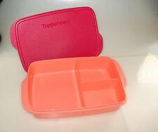 Tupperware To Go Lunchbox Clevere Pause Brotdose Snackbox mit Unterteilung 1l