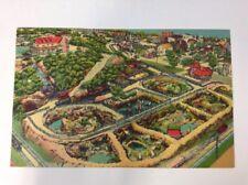 Hamburg Pennsylvania Zoo Roadside Attraction Vintage Color Postcard Posted 1956