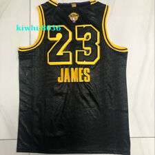 Mens #23 Lebron James Jersey Lakers Final Love