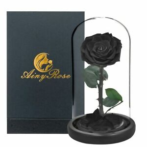 Preserved Rose With Glass Dome Eternal Flower Arrangement For Party Favor Gift