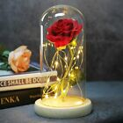 Rose In Glass Dome Romantic gift for lovers Decorations For Home LED Night Light