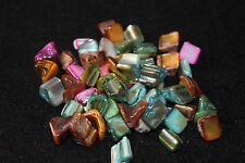 mixed colour shell beads - jewellery making - novelty beads