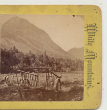 Hay Wagon Mount Cannon Franconia Notch White Mtn NH Best Series Stereoview c1880