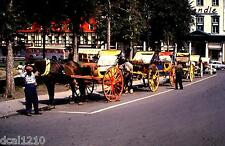 Original 1961 Slide #48 CARRAIGE HORSES QUEBEC