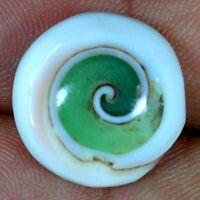 100% Natural Shiva Eye Round Cabochon 18 X 18 X 08mm. 15.30Cts