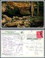 INDIANA Postcard - Spencer, McCormick's Creek State Park, Twin Bridges N55