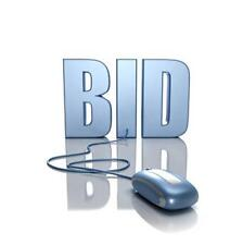 Online Auction Website BUSINESS PLAN + MARKETING PLAN =2 PLANS!