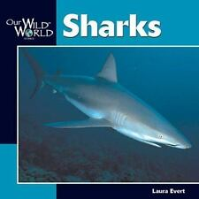 Our Wild World: Sharks by Laura Evert