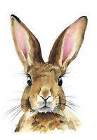 Rabbit Bunny Hare Beautiful Watercolour Art Canvas Print A3