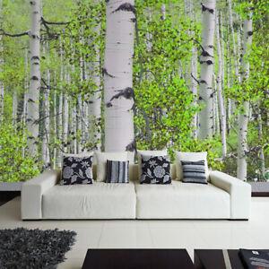 Fototapete Vlies und Papier Tapete Natur Landschaft Wald Bäume Birken