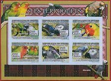 FRENCH GUINEA - ERROR, 2009 IMPERF SHEET: BIRDS, PARROTS, Animals