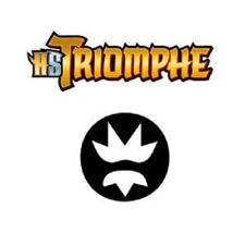 Cartes Pokemon set HS Triomphe /102 2011 100% Français AU CHOIX