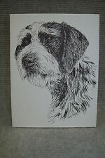 German Wirehair Pen and Ink Stationary Cards, Note Cards, Greeting Cards.10 pk.