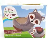ROSCOE RACCOON Ceramic Animal Planter Pot - Home Table Top or Kitchen Decoration