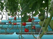 Future Growth'S +Hydro+Plus+ Nutrient+ And Hydroponic Growing Systems