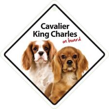 Magnet & Steel Cavalier King Charles on Board Plastic Sign