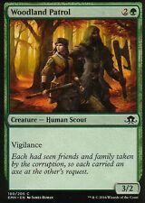 4x woodland patrol | NM/M | Eldritch Moon | Magic MTG