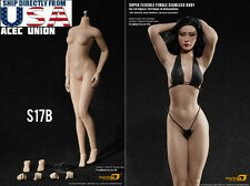 PHICEN 1/6 S17B Super-Flexible Female M Bust Seamless Body SUNTAN Steel Skeleton