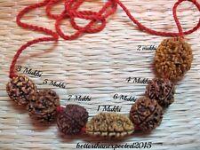 Rudraksh Rudraksha 1 2 3 4 5 6 7 Mukhi Beads Mala Necklace Wrist band bracelet