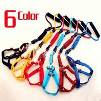 Dog Harness and Leash Set for Small Medium Large Dogs Durable Nylon Rope 6 Color