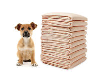 PetInn 50 Counts Super Absorbent Training Pads 45 * 60cm Multi-layer Potty Training Pads for Dog and Puppy Pee